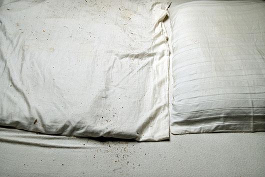 WARTEZIMMER.BETT | 2006 | Inkjetprint | 50 × 70 cm