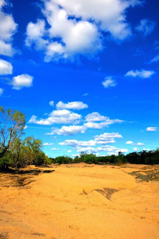 砂漠と広大な空、求めていたオーストラリア像