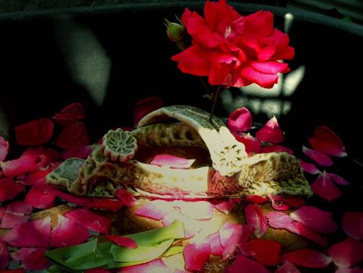 小林夢狂 MukyoKobayashi 薔薇と一輪挿し あおい夢工房 炎と楽園のアート