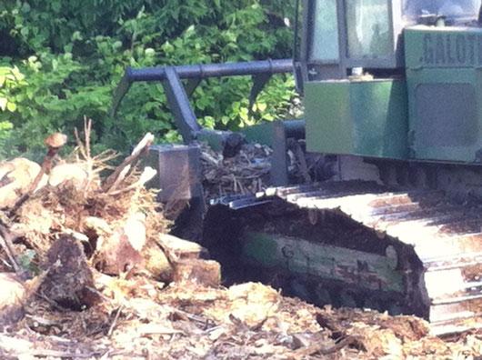 gyrobroyage débroussaillement nettoyer terrain mise à nu