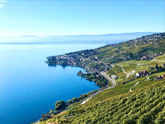 Svizzera Losanna
