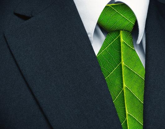 Bioreinigung,  Bild mit grüner Krawatte