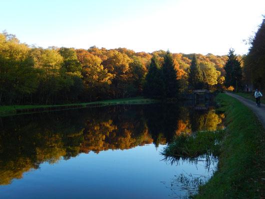 Canal du Nivernais en automne