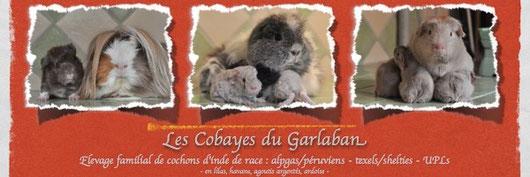 Les cobayes du Garlaban