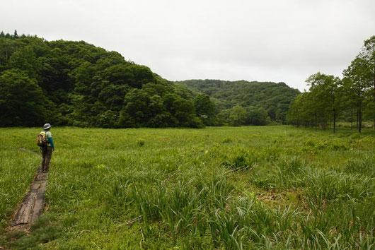 写真1 沼ノ原湿原