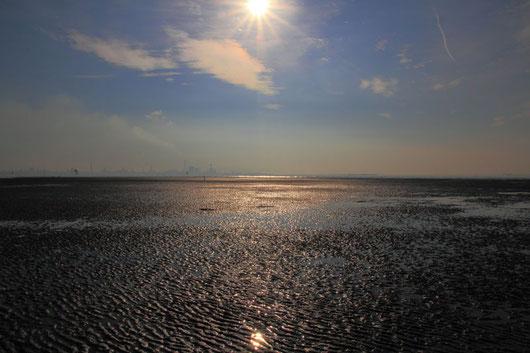 潮が満ち始めた干潟 静かだが、あっという間に水が迫ってくる