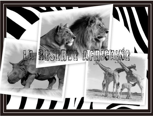 La réserve Africaine Mobilhome Sigean