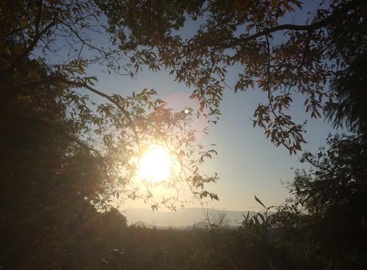 山の辺の道(筆者撮影)