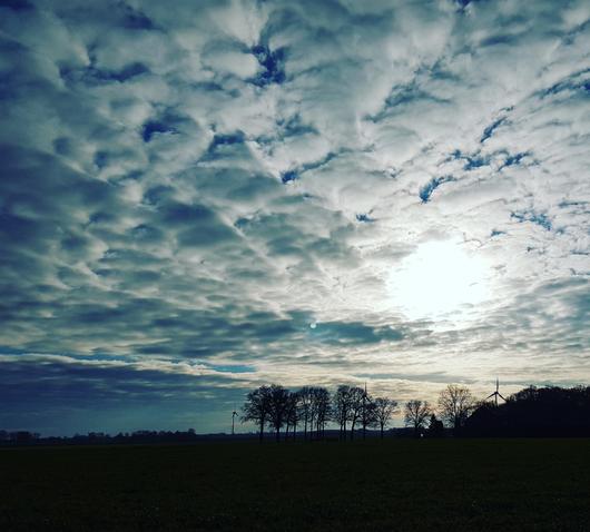 Landschaft Niederrhein
