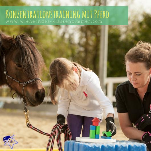 Katzenberger´sches Konzentrationstraining mit Pferd - Förderung der Konzentrationsfähigkeit von Kindern mit Pferden.