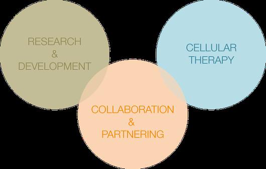 Our Vision PL BioScience