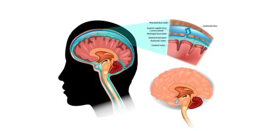 脳脊髄液 ヘッドマッサージ