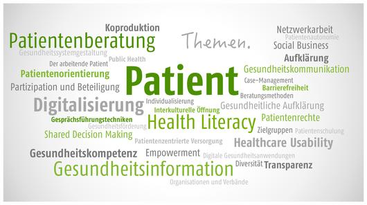 Themenfelder der Patientenprojekte GmbH (Bild durch Anklicken vergrößern)