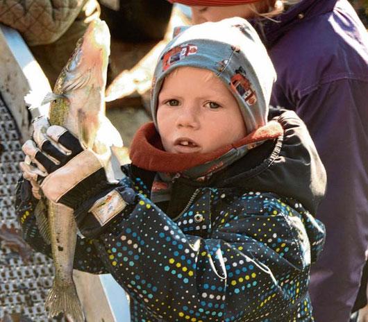 Kleiner Mann – großer Fang: Julian (6) mit seinem Zander.