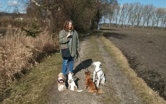 Andrea - die Managerin, Dosenöffnerin und Gassitante bei HundKatzHaus