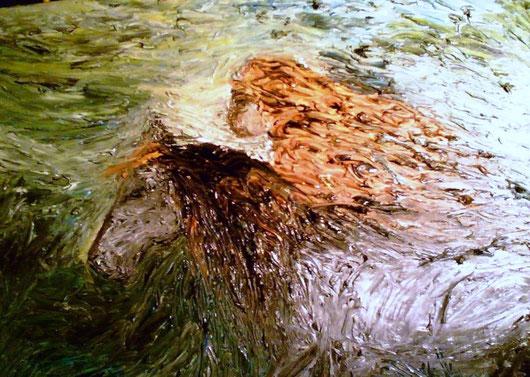 IL VOLO DI ARI - 2008 olio su tela 35 x 45