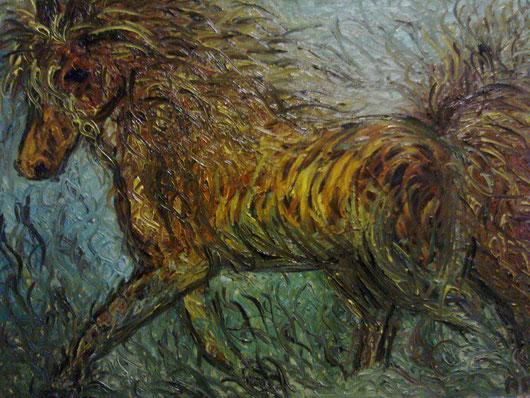 ZOCCOLI SULLA SABBIA - 2011 olio su tela 45 x 75