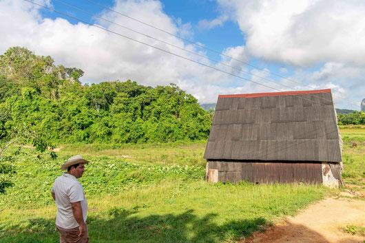 Tabaksregio Vinales/Pinar del Rio