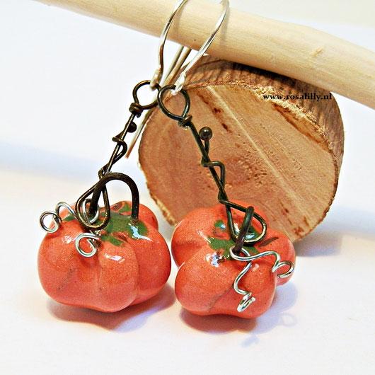 pompoen oorbellen van keramiek, handgemaakte unieke fantasy sieraden