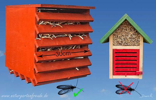 Insektennisthilfe Insektenhotel Nisthilfe Florfliegenkasten Überwinterung von Florfliegen insect nesting aid insect hotel green lacewing hibernation bug house