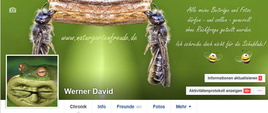 Werner Davide Facebook Chronik