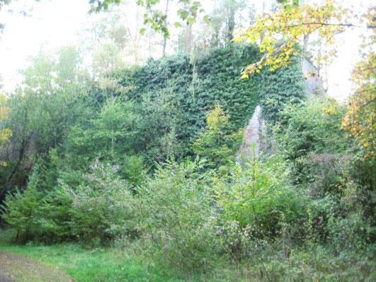 Kalilauge Einleitung Hergenrath BiHU Natura-2000-Gebiet Geule