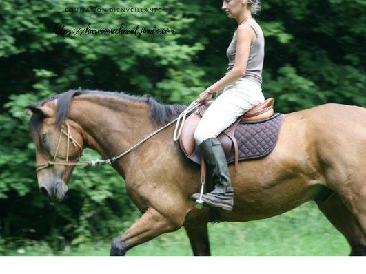 éthologie légèreté dressage bienveillance cheval