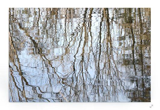 """""""Floating Lines"""" Abstraktes Naturbild mit Spiegelungen von Bäumen im Wasser."""