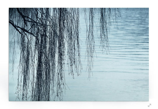 """ZEN By The Lake"" Abstraktes Naturbild mit Baum am See in Blautönen."