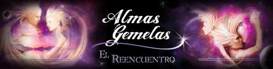 PAGINA WEB sobre ALMAS GEMELAS