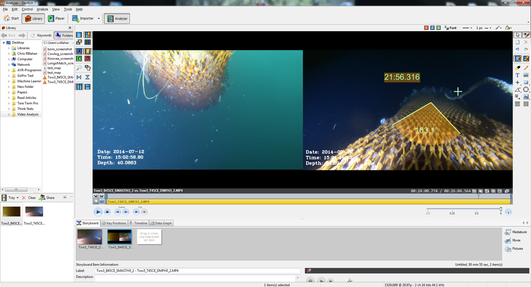 Screen capture of the Dartfish software package.