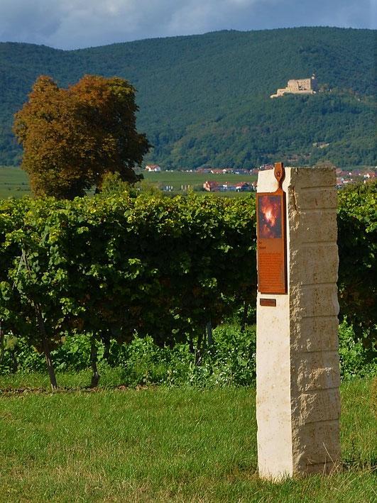 Bibelverweise und im Hintergrund das Hambacher Schloss - der Biblische Weinpfad gibt Ein- und Ausblicke.