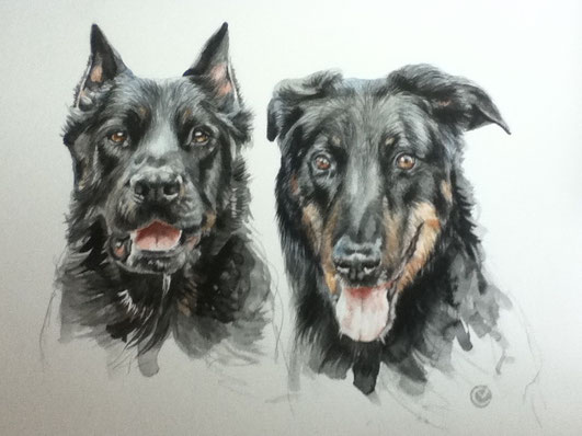 Mes beaucerons