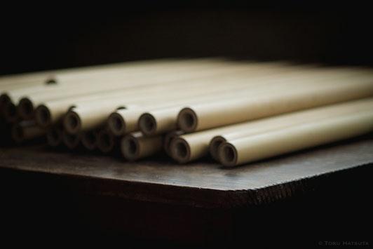 節なしの細長い竹は貴重な素材(Fujifilm X-Pro2)