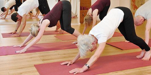 Yoga - zeitgemäß, undogmatisch