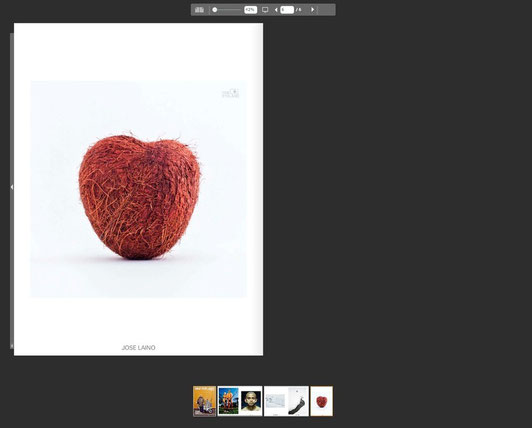 Coconut heart in One Eyeland MAGAZINE
