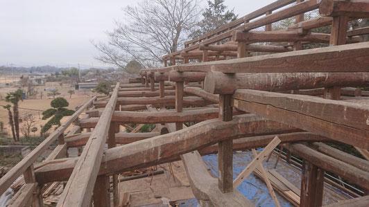 二階天井の上には、曲がりくねった松梁架構の世界が広がる。