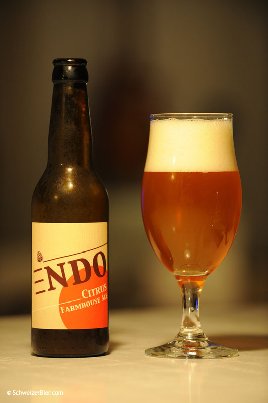 Endo Citrus - Farmhouse Ale