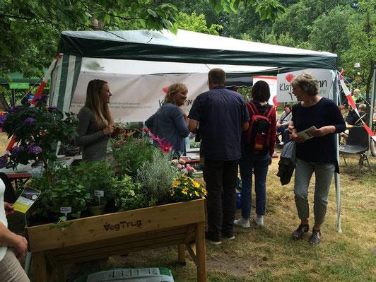 Unser Stand beim Umwelt-Tag der Heerser-Mühle in Bad Salzuflen im Juni 2015