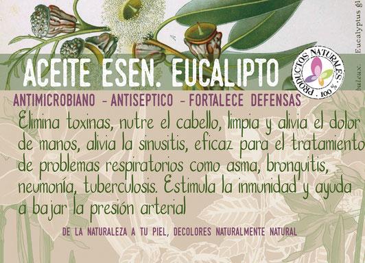 Aceite Esencial de Eucalipto-tienda online decolores- cosmética natural ecológica