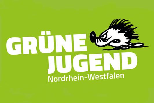 """Partei """"Grüne Jugend Nordrhein-Westfalen"""""""
