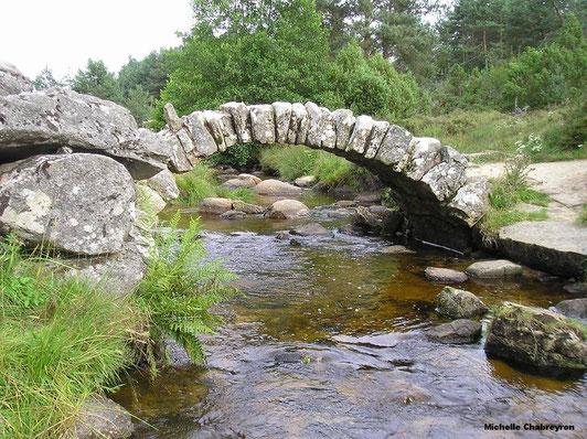 Pont de Senoueix dans la creuse. Arche de pierre dit romain mais datant du 17 eme siècle. situé sur le plateau de millevache dans un endroit bucolique et apaisant, il emjambe le ruisseau du Thaurion