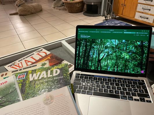 Unterrichtsvorbereitung am Laptop