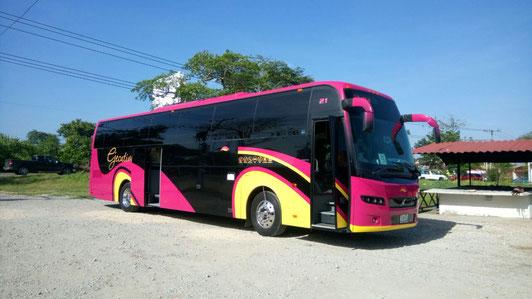 Renta de Autobuses CDMX de 47 personas