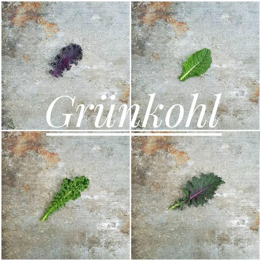 Purple Curly, Toskanischer, Green Curly, Siberischer Grünkohl