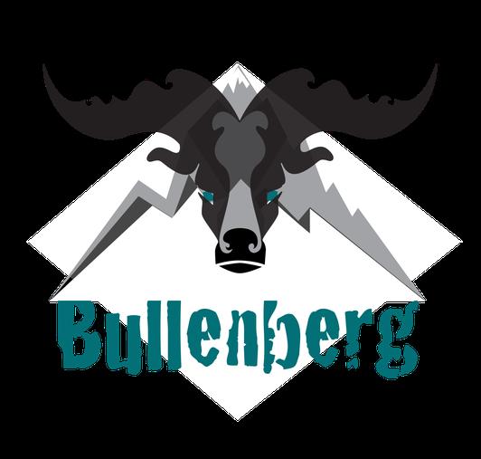 bullenberg.eu, Aktienanalysen, Bullenberg, Aktien Kaufen, Steven Hofmeister Unternehmer und Gründer, Aktien Itzehoe, Aktien Hamburg
