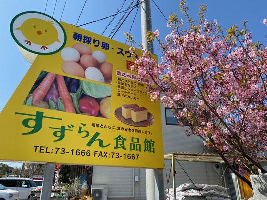 大分県産ローカルグルメ|鈴木養鶏場の卵スイーツ