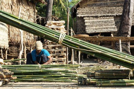 coupe de bambou bamboo
