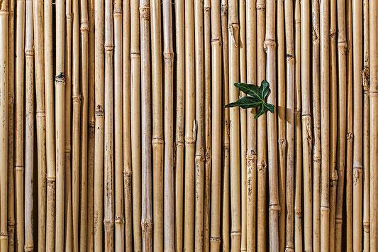 panneaux et placage en bambou