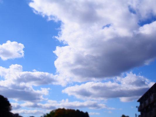よい秋晴れの日。